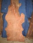 "#402. Redwood Lace Burl (83""L x 33.5""W x 2.75""T) $3,649"